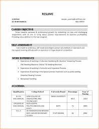Objective Sentences For Resume Formidable Professional Resume Career Objective Also Goal For Examp 22