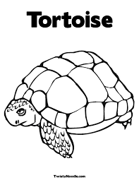 Small Picture African Spurred Tortoise Coloring Pages African Spurred Tortoise