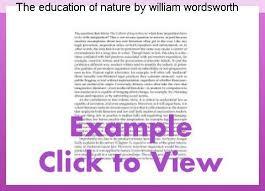 essay write on scholarship in hindi