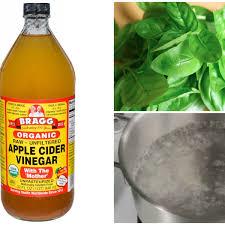 diy apple cider vinegar toner with basil water