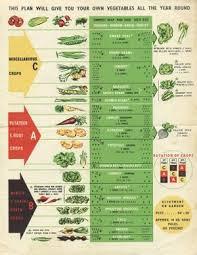 Crop Rotation Chart Vegetable Gardening Garden Rotation At Potawot Food Gardens Appropedia The