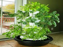 hydroponic vertical garden. Build Vertical Hydroponic Garden Inspirational Earth Gardens Relies On ,