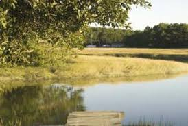 natural looking in ground pools. Similar To A Real Pond, In Ground Pond Pools Utilize Curved Lines And  Asymmetry Natural Looking