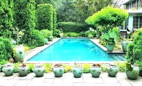 full sun landscaping plants around pool full sun trees around pool swimming pool with pots poolside