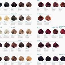 Aveda Hair Color Chart Online In 2019 Aveda Hair Color