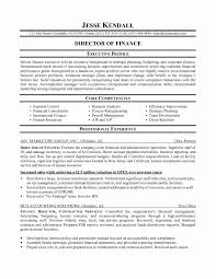 Financial Resume Example