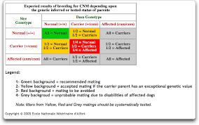 Centronuclear Myopathy In Labradors