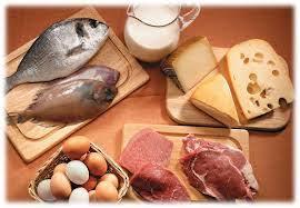 Resultado de imagen para alimentos proteinas