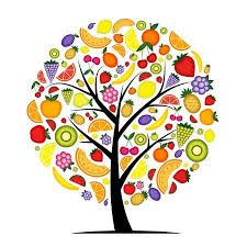 fruit tree clipart. Perfect Fruit Energy Fruit Tree For Your Design On Fruit Tree Clipart E