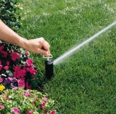 Which Hunter Sprinkler Is Right For Your Job Turf