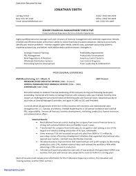 Sample Resume For Back Office Executive Fresh Fice Executive