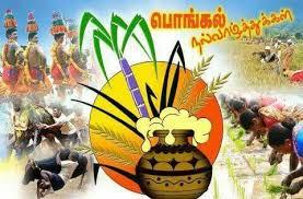 கதிர் அறுத்து நெல் உதிர்த்து வைக்கோல் போர் செய்து நெல் மூட்டை கட்டிய  நாட்கள் போய்... மீண்டும் #தமிழினம் உழ… | Happy pongal, Happy pongal wishes,  Harvest festival