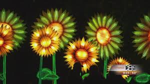 experience lanterns in the garden at the fort worth botanic garden wfaa com