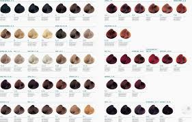 Issue Professional Color Chart Nak Soft Colours