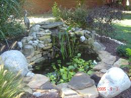Small Picture Cheap Backyard Pond Ideas backyard landscaping ideas on a budget