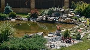 garden pond kits amaze vege garden