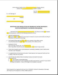 Petition For Divorce Texas   Fill Online  Printable  Fillable     Florida Court Forms Image titled File Divorce Online Step