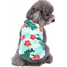 <b>Pet</b> Clothes,IEason <b>Hot Sale</b>! 2017 Cool And <b>Cute</b> The Christmas ...