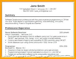 Resume Summary Examples 3529