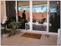 french patio doors with dog door. singular french door with dog patio doors doggie builtn double