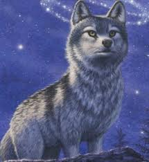 Get your kindle here, or download a free kindle reading app. Faolan Wolves Of The Beyond Wiki Fandom