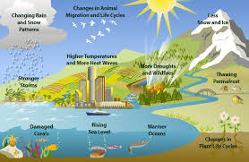 climate change environmental degradation water scarcity threaten  clues of climate change