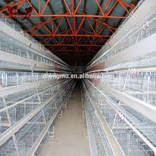 Poultry Farm Design Design Modern Chicken Farm Buy Chicken Farm Poultry Farm Design Country Chicken Farming Product On Alibaba Com
