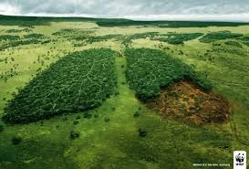 save trees save yourself