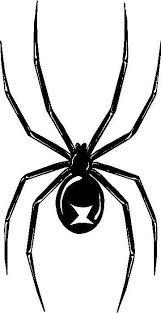 Black Widow Spider Outline