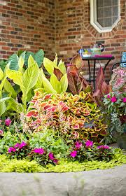 plant a pocket size garden in an afternoon enjoy it all summer long