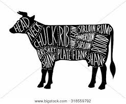 Cow Butcher Chart Meat Cuts Chart Vector Photo Free Trial Bigstock