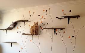 it was wonderful to see such elaborate designs that people had created for their cats it definitely shows that there s a growing awareness of the need for