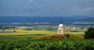 Dovolená a výlety Jihomoravský kraj a Jižní Morava | Krauzovi na cestách
