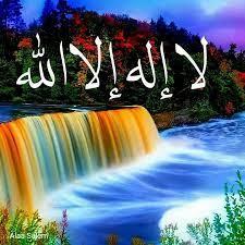 عرفات ابو شاكر Mohd - YouTube