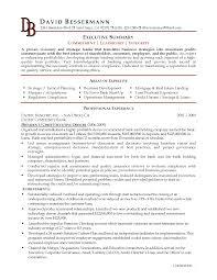 How To Write A Executive Summary Resume Writing Sample Example