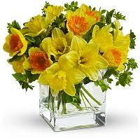 Best & Worst <b>Flowers</b> for Allergy Sufferers | Teleflora