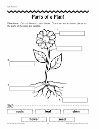 Small Picture parts of a plant coloring sheet label and color the parts of a