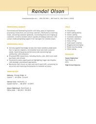 Resume Templates Easy To Customize Online Templates