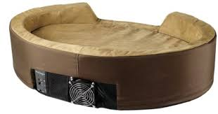 Amazon Dolce Vita DuoTemp Pet Bed Medium 32 by 22 by 8