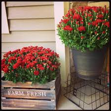 11. Rustic Metal Bucket and Wood Crate Planters