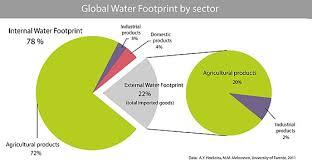 Water Footprint Wikipedia