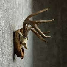 chic design deer antler wall decor smart ideas home designing for nursery faux