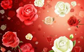 Small Picture 1 Flower Of Rose Red Walls Inc Net 195802 Wallpaper For Waplag