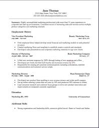 the director of marketing resume example essaymafiacom online marketing resume sample