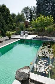 Natural looking in ground pools Homemade Natural Natural Swimming Pools By Biotopthe New Eco Trend Pinterest 186 Best Natural Pools Images Backyard Ponds Gardens Natural