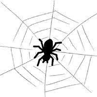 蜘蛛 イラスト シンプルイラスト素材