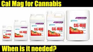 Using Calmag For Cannabis Cannabis Vlog 014 Youtube