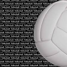 free volleyball essays and papers   helpme volleyball essay