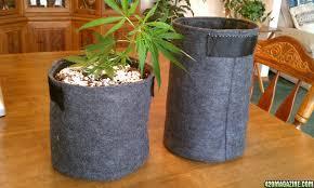 diy fabric grow pots cannabags made from eco felt