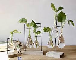 Decor for office Minimalist Simple Hygge Glass Vase Wood Set Water Plant Glass Vase Home Decor Office Decor Planters Gift Idea Succulent Terrariums Mini Vase Etsy Office Decor Etsy